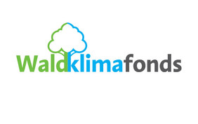 Logo des Waldklimafonds