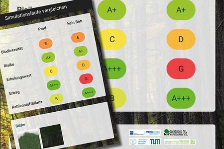 Waldbauoptionen simulieren: Drei iWaldApps, entwickelt in einem BMEL-geförderten Forschungsprojekt, machen es möglich. Die Apps werden jetzt der Öffentlichkeit vorgestellt. Foto: Hochschule Weihenstephan-Triesdorf (HSWT)